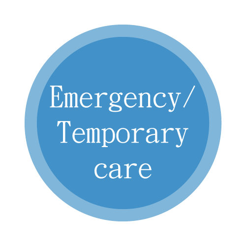 Emergency / Temporary care